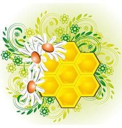 honeycombs in flowers vector image vector image