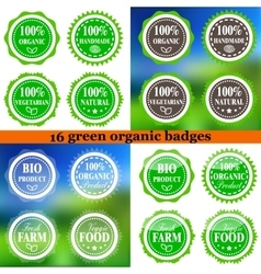 Set of Organic Eco badges vector image