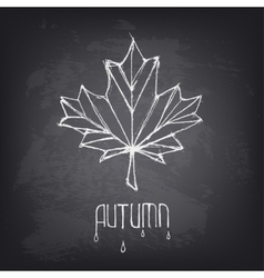 Hand drawn autumn word and leaf on blackboard vector