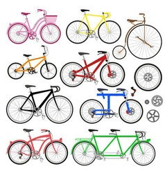Bicycles and parts vector