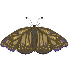 Brown moth drawing by hand vector