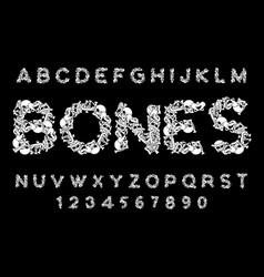 Bones font letters anatomy skeleton abc skull and vector