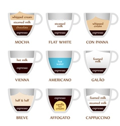 Coffee types vector