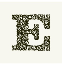 Elegant capital letter e in the style baroque vector