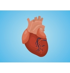 Isolated heart with real style and blue vector