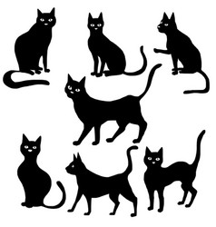 black cat silhouettes vector image