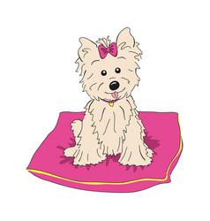 Cairn terrier dog breed vintage vector