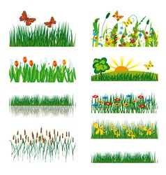 elements of nature vector image