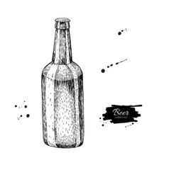 Beer glass bottle with splash Sketch style vector image