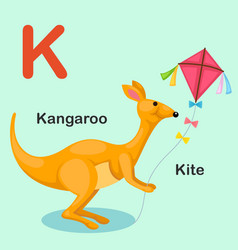 isolated animal alphabet letter k-kite kangaroo vector image vector image