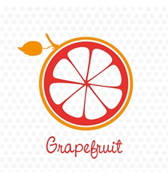 Simplified silhouette grapefruit stem and leaf vector