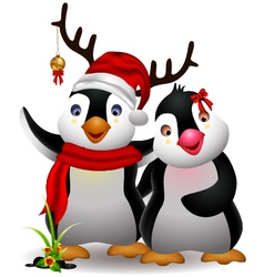 Cute penguin cartoon couple vector