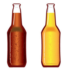 Beer bottles dark and light vector