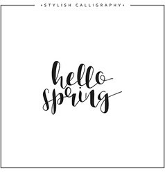 Hello spring time of year calligraphy phrase in vector