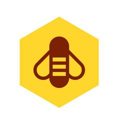 bee on honeycomb vector image vector image