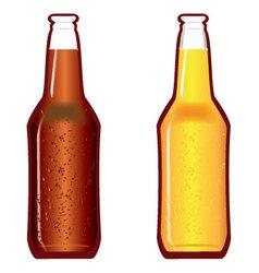Beer bottles dark and light vector