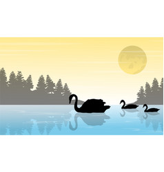 Silhouette of swan on lake scenery vector