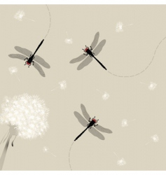 dandelion and dragonfly vector image