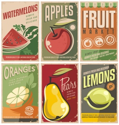 Collection of retro fruit poster designs vector image