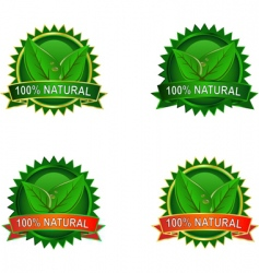 product labels vector image