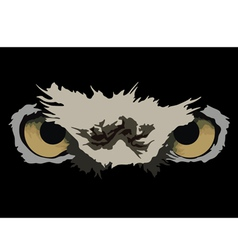 owl eyes vector image