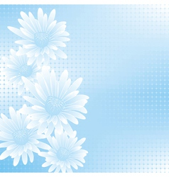 chamomile blue 5 vector image