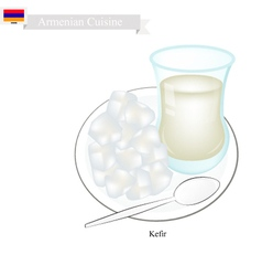 Kefir or armenian fermented milk with sour flavor vector
