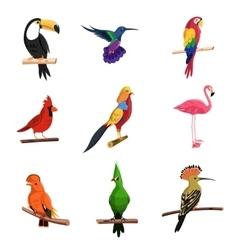 Exotic birds set vector