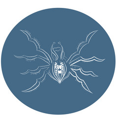Logo spider in the circle vector