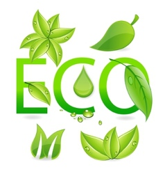 nature eco leafs vector image