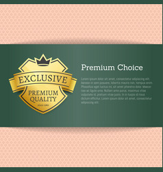 premium choice exclusive on vector image vector image