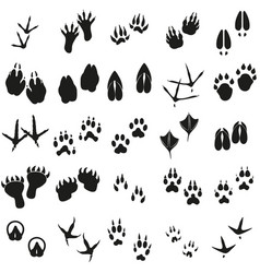 Silhouettes animal birds and mammals footprints vector