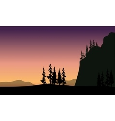 Spruce in hills silhouette vector image
