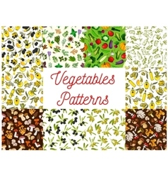 Vegetable mushroom olive spice seamless pattern vector image vector image