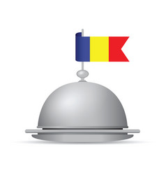 Romanian flag dinner platter vector