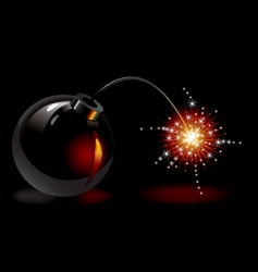bomb with a burning wick vector image