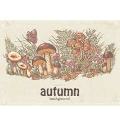 Image of autumn background with white mushrooms vector image