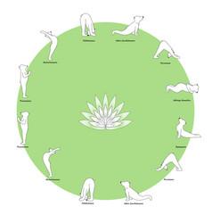 bear yoga vector image vector image