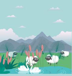 Lambs sheep in nature feed grass farm cartoon vector