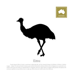 black silhouette of ostrich emu vector image