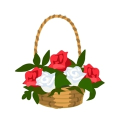 Basket of white and red roses vector