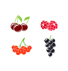 berries abstract fruit on white background vector image vector image