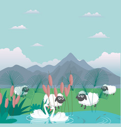 Lambs sheep in nature feed grass farm cartoon vector