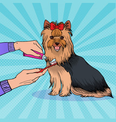 Pop artbrushing teeth yorkshire terrier vector
