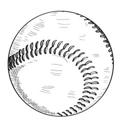 sketch of a baseball ball vector image
