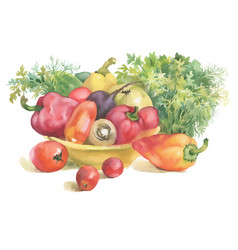 Watercolor vegetables in bowl and herbs isolated vector