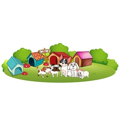 Dogs outside their houses vector