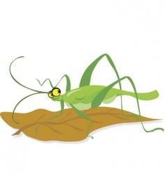 grasshopper vector image vector image