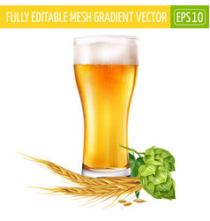 Glass of beer and hops on white background vector
