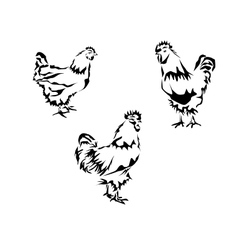 Silhouette of a chicken and a rooster vector